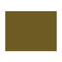 lordos beach hotal logo